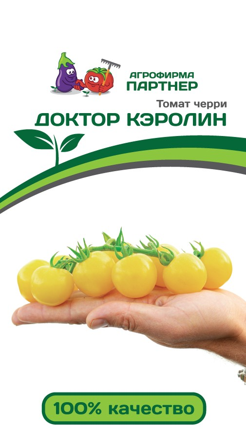ТОМАТ ДОКТОР КЭРОЛИН, фото