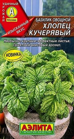Базилик овощной Хлопец кучерявый, 0,3г, фото