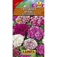 Гвоздика Атлас турецкая, смесь окрасок, 0,3г, фото
